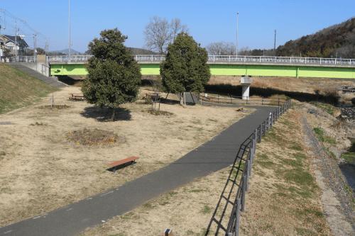 越辺川遊歩道(越生東)