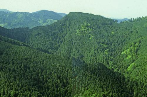 麦原の城山