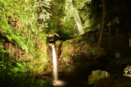 黒山三滝ライトアップ