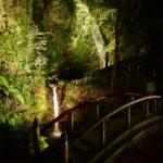 黒山三滝秋の紅葉ライトアップを行います