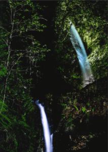 『白瀑の輝き』