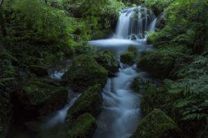 『白糸の滝』